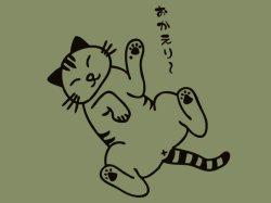 画像1: 猫にします? オリーブ