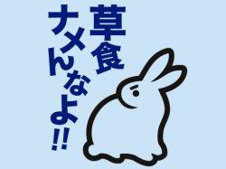 画像1: 草食ナメんなよ!! ライトブルー